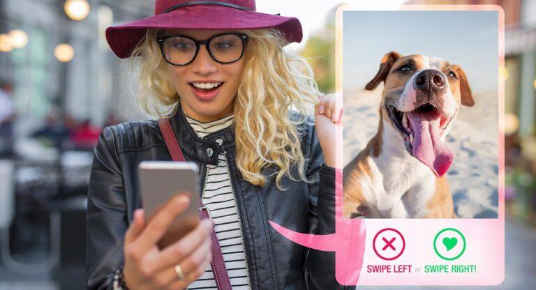 Crean perfiles de Tinder para encontrarles dueños a las